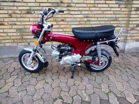 DAX ZH50B EURO4 CANDY RUBY RED
